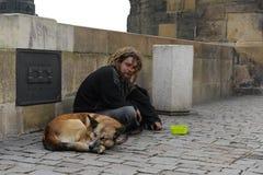 Trauriger obdachloser Mann mit einem Hund sitzt und sammelt Almosen Stockbild