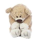 Trauriger und einsamer Teddybär Lizenzfreie Stockfotografie