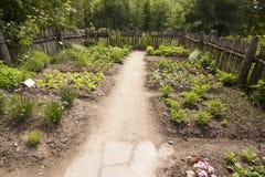 Trauttmansdorff Roszuje Merano Włochy kwiaty i orchidee Uprawiają ogródek Fotografia Royalty Free