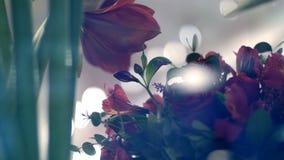 A través de la demostración-ventana de una floristería, usted puede ver muchas diversos flores y ramos almacen de metraje de vídeo