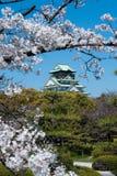 A través de los árboles del flor, castlein japonés Osaka Foto de archivo