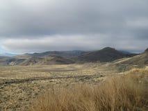 A través de los campos en la estación del invierno Imagen de archivo