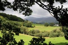 A través de los campos a Snowdonia Imagenes de archivo