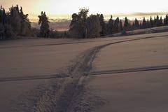 A través del campo de nieve Fotografía de archivo
