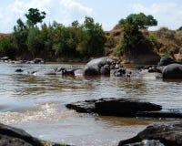 A través del río Fotos de archivo libres de regalías