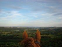 A través del valle de Crake de los oídos de los caballos Foto de archivo libre de regalías