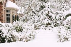 trava upp snow royaltyfria bilder