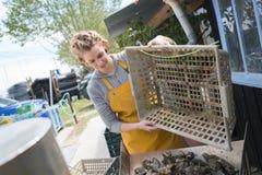 Travail à la ferme d'huître Photos stock