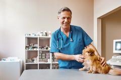 Travail avec des animaux Vétérinaire âgé moyen positif frottant le petit et mignon chien avant de composer le contrôle à la clini photos libres de droits