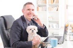 Travail avec le chien dans le bureau Image stock