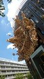 Travail contemporain collectif : Éclaboussure dans des caisses en bois à Nantes photographie stock libre de droits