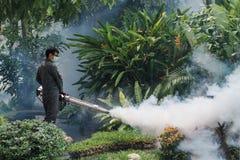 Travail d'homme embrumant pour éliminer le moustique pour empêcher le virus écarté de fièvre dengue et de zika Images stock