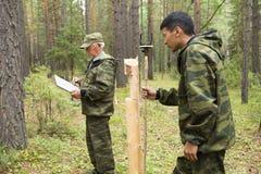 Travail d'inspecteurs de forêt dans la forêt Photographie stock
