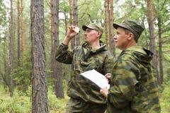 Travail d'inspecteurs de forêt dans la forêt Images stock