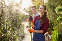 Travail dans le jardin La jardinière de sourire de fille pulvérise l'eau et un type pulvérise l'engrais sur des usines dans la be photo libre de droits