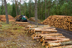 Travail de camion avec le bois de construction image libre de droits