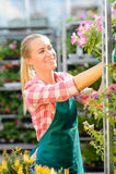 Travail de femme de jardinerie avec les fleurs mises en pot Image libre de droits