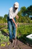 Travail de jardin Photographie stock libre de droits