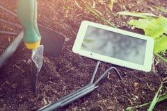 Travail de jardin avec la Tablette d'affaires et les outils de jardinage blancs au coucher du soleil Images libres de droits
