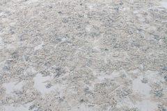 Travail de sable de crabe Image stock