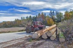Travail du bois dans la forêt Photos libres de droits