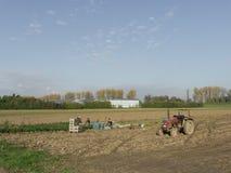Travail polonais d'agriculteurs dans les domaines végétaux photographie stock