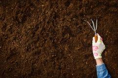 Travaillant dans le jardin, plantant une usine Vue supérieure de sol photo stock