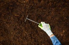 Travaillant dans le jardin, plantant une usine Vue supérieure de sol photographie stock libre de droits