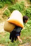 Travailler dur de l'agriculteur montagneux Photo stock