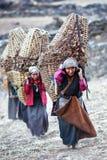 Travailler népalais de femmes Photo libre de droits