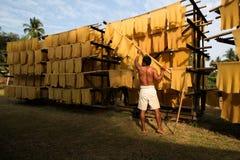 Travailleur dans des affaires en caoutchouc locales Images stock