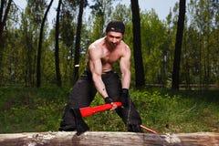 Travailleur de bûcheron coupant en bas d'une interruption d'arbre beaucoup le splinte photographie stock libre de droits