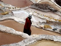 Travailleur de mine de sel, salines (Pérou) Photo libre de droits