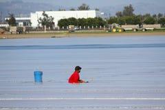 Travailleur migrant de Plasticulture-agriculture Images libres de droits