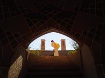 Travailleur par les tours contagieuses de vent du palais de Kashan Photographie stock
