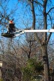 Travailleur sur la grue triming un arbre regardant vers le bas à Tulsa l'Oklahoma Etats-Unis 3 6 2018 Photographie stock libre de droits