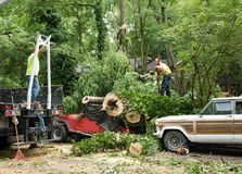 Travailleurs accrochant la grue à l'arbre Images libres de droits