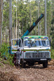 Travailleurs d'industrie de bois de construction devant le camion Images stock