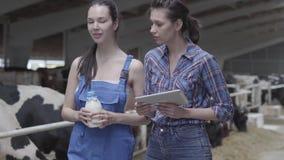 Travailleurs féminins mignons d'agriculteur du portrait deux à la ferme de vache vérifiant la qualité du lait dans la bouteille U clips vidéos