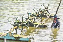 Travailleurs installant les aérateurs dans l'étang de crevette Photographie stock libre de droits