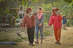 Travailleurs migrants du Cambodge en Thaïlande Photos stock