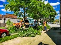 Travailleurs municipaux équilibrant des arbres dans le voisinage photos stock