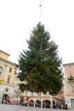 Travailleurs qui déplacent un arbre de Noël qui est déposé d'un hélicoptère Image stock