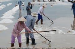 Travailleurs vietnamiens sur le sel-lac Photos stock