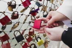 Travando o cadeado do amor Imagem de Stock