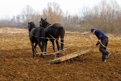 Travaux sur le terrain de ressort dans les zones rurales de la Transcarpathie Photo libre de droits