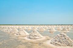 travde fält saltar upp havet thailand Arkivfoton