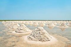 travde fält saltar upp havet thailand Royaltyfria Bilder