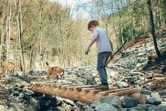 Λίγο δάσος traveker την άνοιξη με το σκυλί του Στοκ εικόνες με δικαίωμα ελεύθερης χρήσης