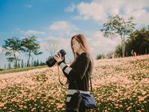 Travel and adventure concept from beautiful black long hair photographer asian girl with her camera travel and take photo at flow. Er field with soft focus royalty free stock images